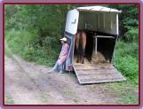 kůň už čeká a auto pořád nikde..