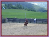Malenice 2007, disciplína Calf Roping