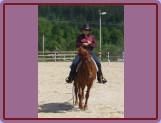 Bask při úloze Horsemanship
